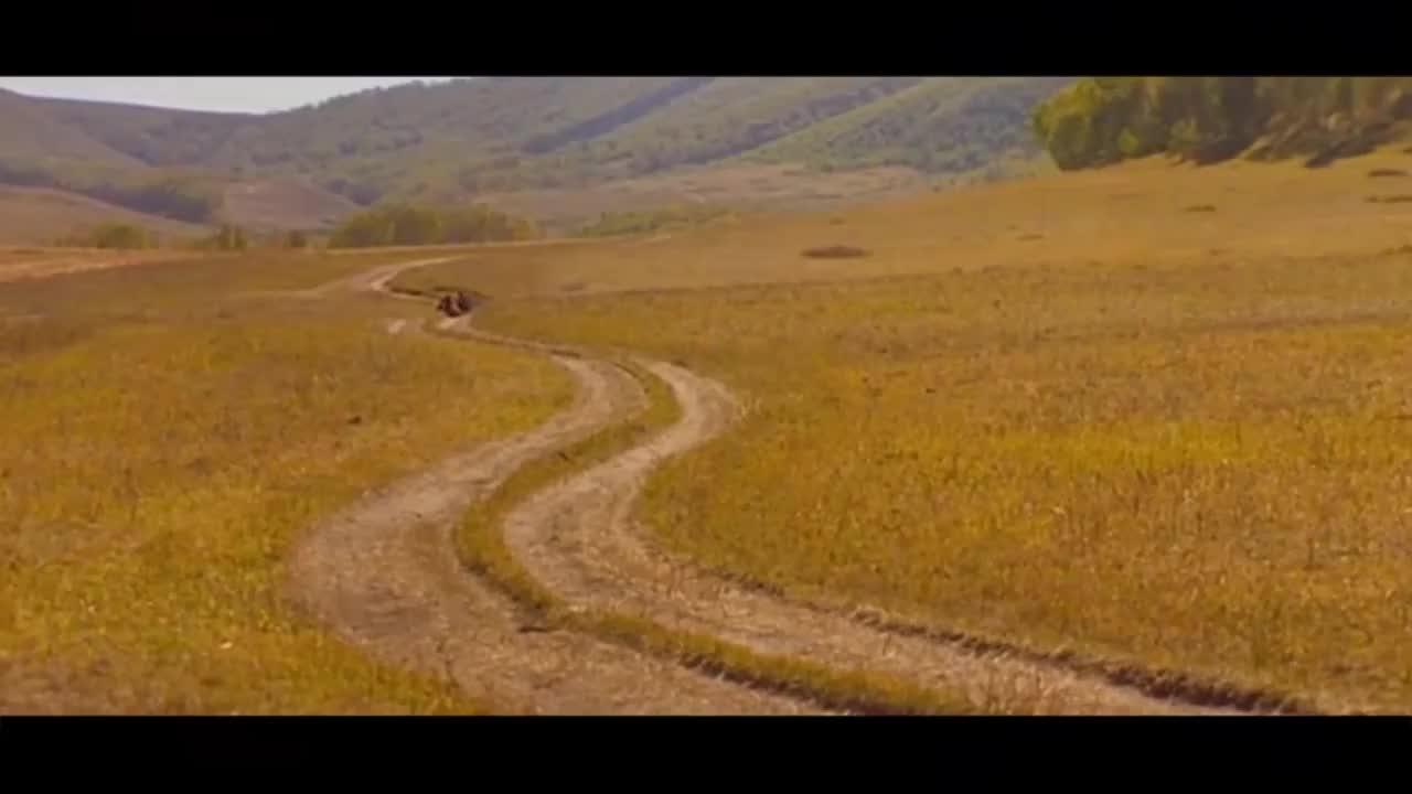 王琪一首《可可托海的牧羊人》,唱出人间最美痴情,听一次醉一次