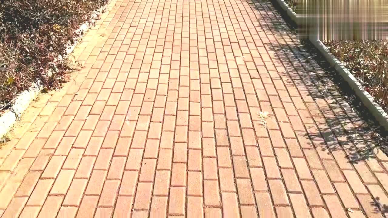 太阳暖暖的,带宝宝走走逛逛!