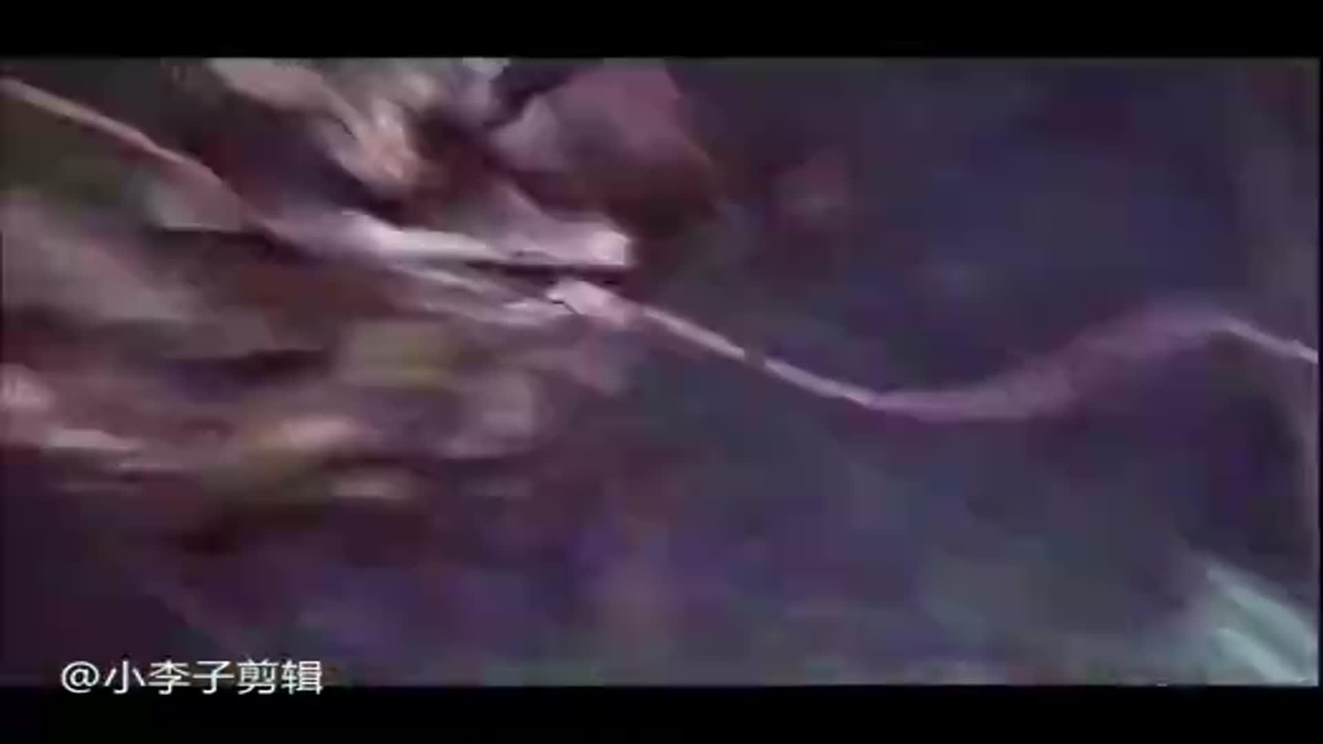 影视:记得在丛林遇到这群小可爱,要大声的喊哦盗墓迷城