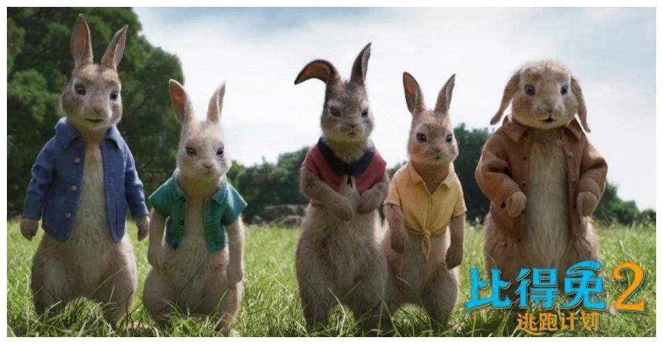 """""""兔界一哥""""竟策划史上最大抢劫案"""
