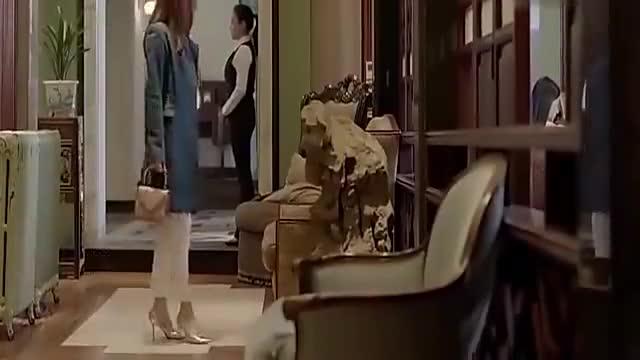 好先生:整个电视剧中最精彩的部分,江疏影孙红雷相亲