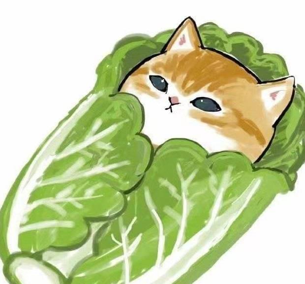 """王一博扮演了一只""""卷心菜""""的猫是怎么回事"""