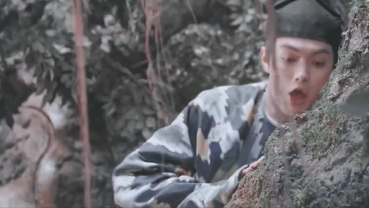 月上重火:当双奥利奥遇上Soleo,机智小透透会怎么选?