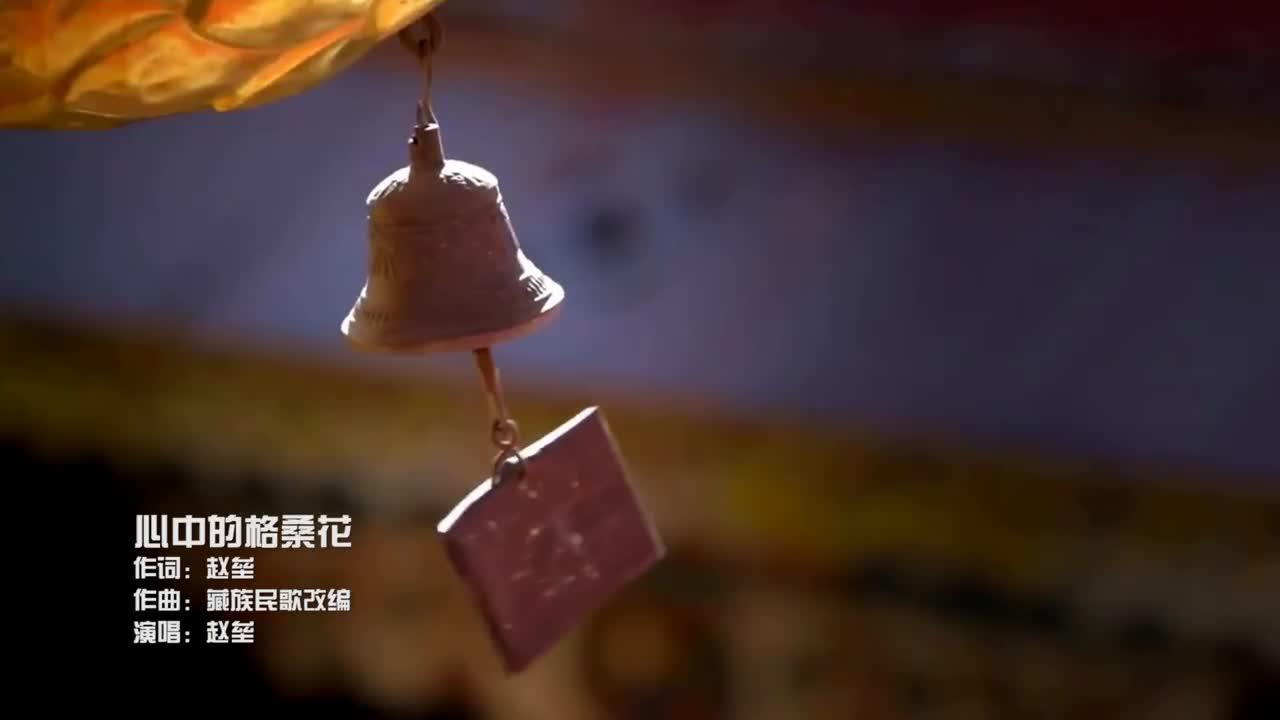 赵垒《心中的格桑花》MV