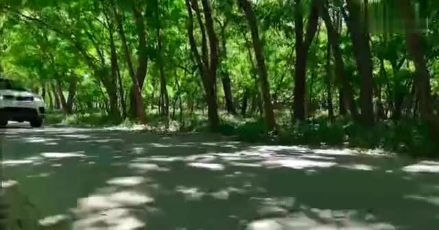 视频:路虎揽胜运动混动版P400e—《行走的说明书》