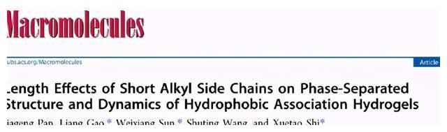 短烷基侧链的长度对疏水缔合水凝胶相分离结构和动力学的影响