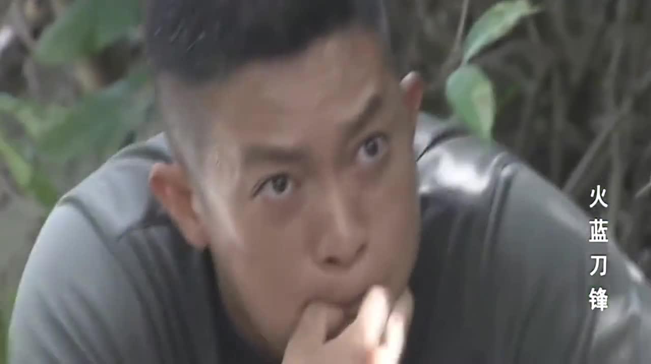 蒋小鱼智斗海盗,调虎离山救沈鸽