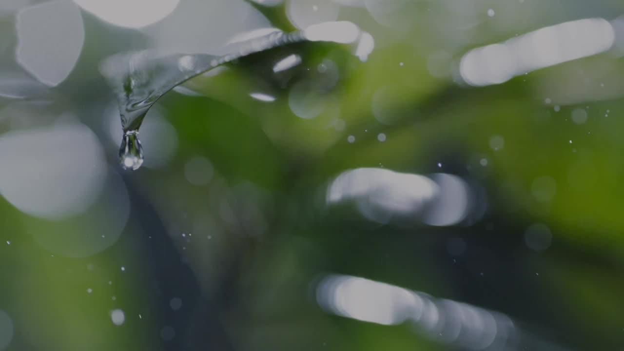 《刘德华-风风雨雨》,唱出生死相许的爱