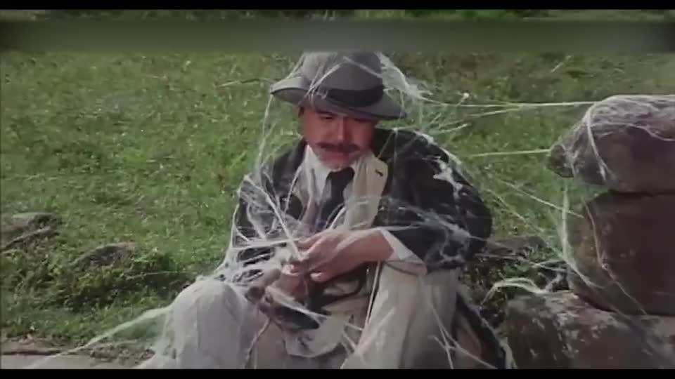 探长在路上守株待兔,盯了太长时间,身上结满了蜘蛛网