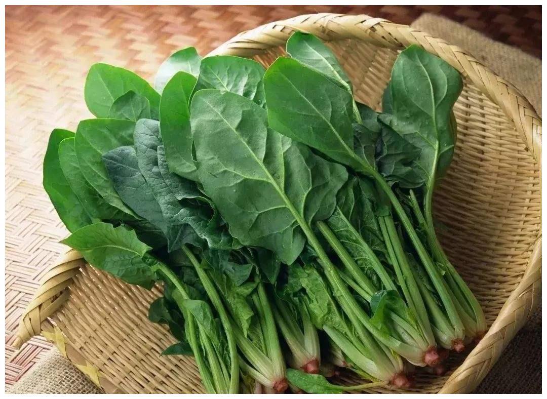 宝宝辅食为何最好不要添加菠菜?菠菜真可以补铁吗?营养师告诉你