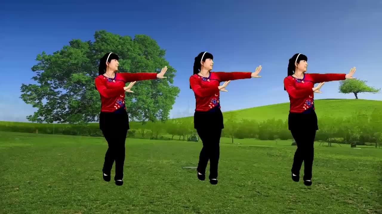 广场舞《今生陪你一起走》歌声优美动听,简单又好看