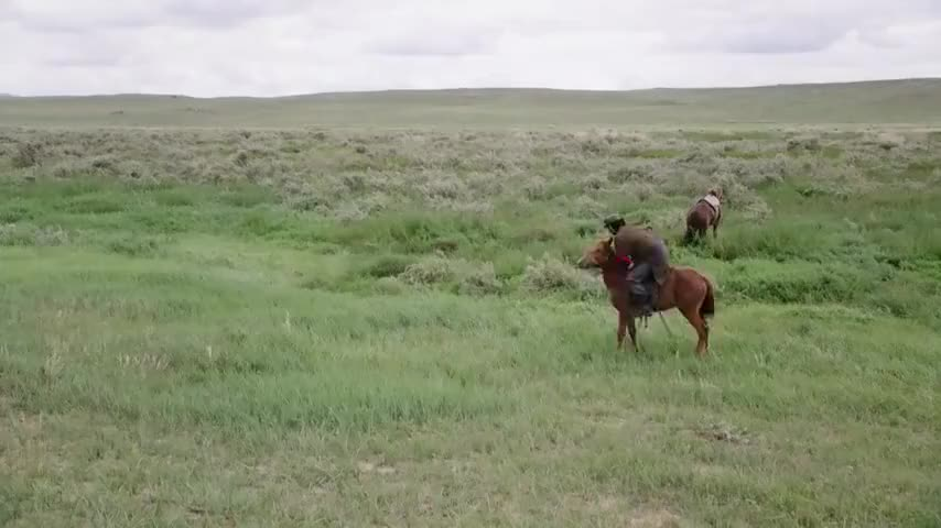 徐连长在兔子滩果然摔断了腿差点就像当年宝力根一样坠马而死