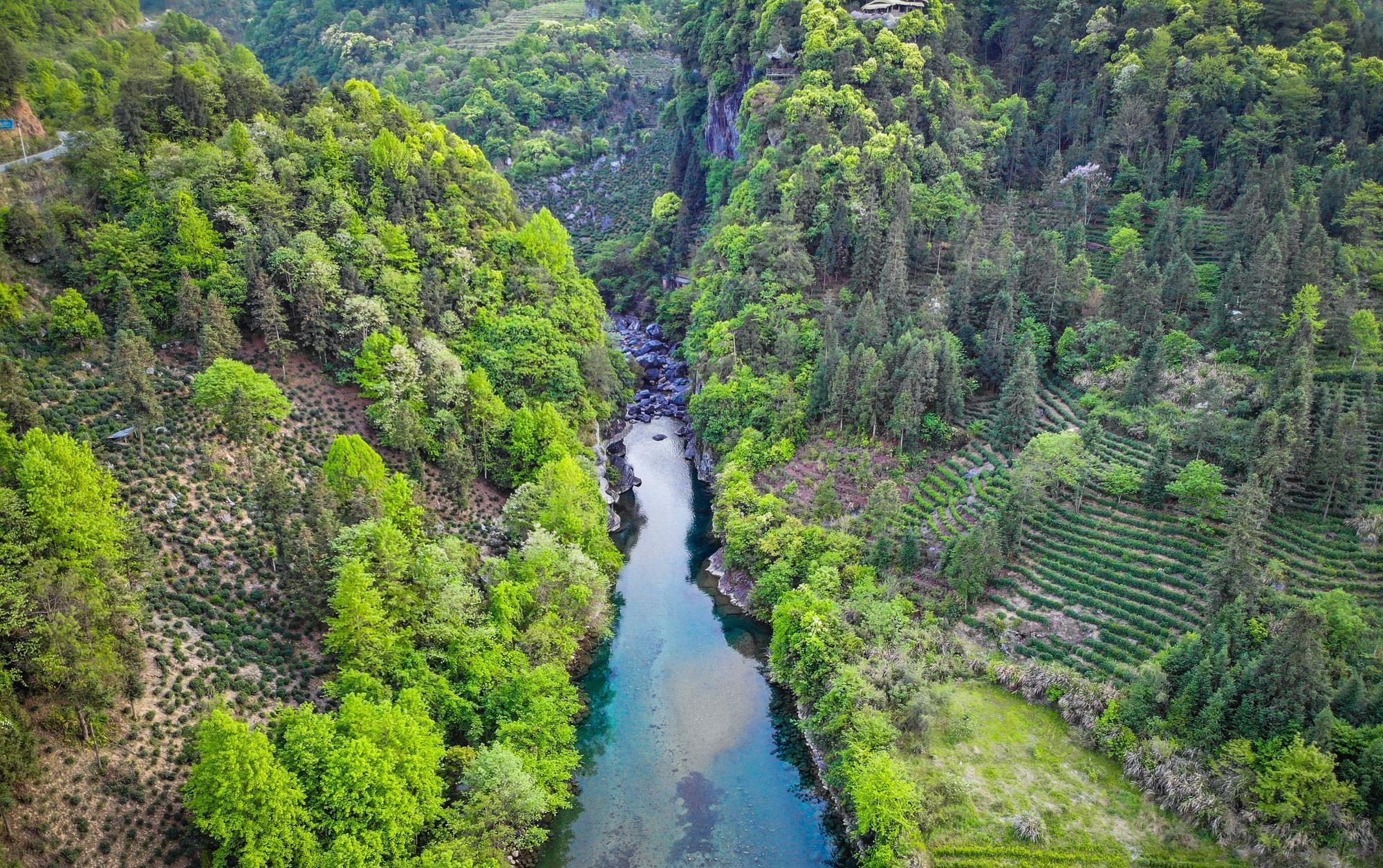 安徽最原始的山景、水景,甚少人知晓,被誉华东最后一片原始森林