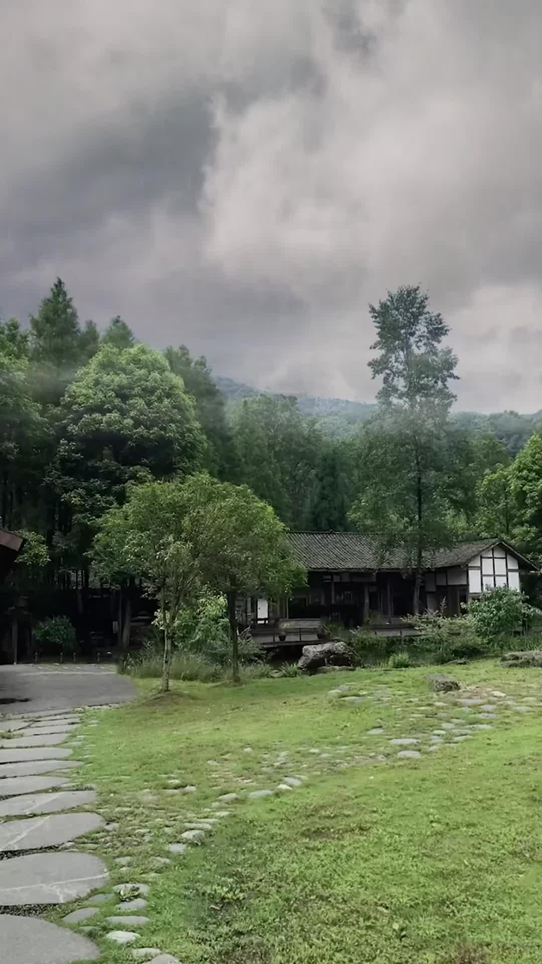 《阿宝张冬玲-美丽大草原》一曲好听的歌犹如天籁,好像回到当年