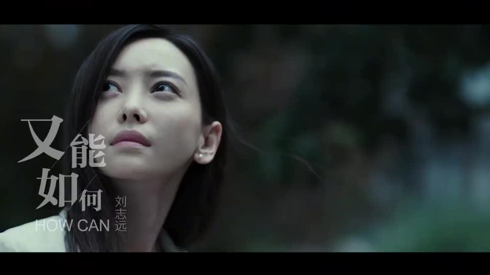 刘志远一曲《又能如何》,伤感虐心,听得心酸!
