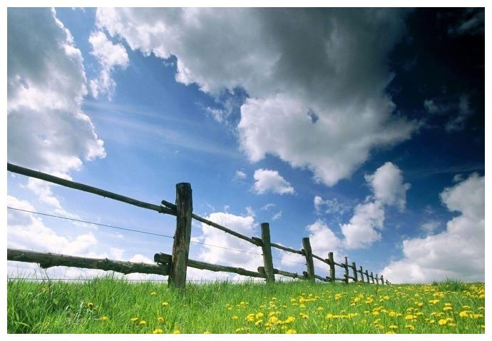 早上朋友圈秒赞的句子,唯美走心,直抵心灵!
