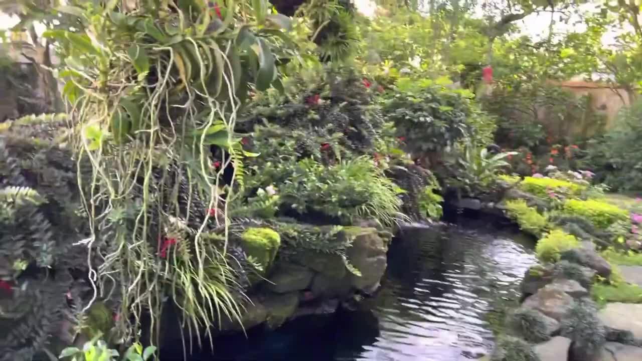 当初花20万,在乡下老家造鱼池院子,意境美,现在能值上百万了吧