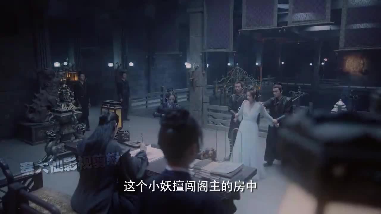 遇龙:高冷无情阁主X萌怂话痨鸟妖,自己捡的媳妇跪着也要宠下去