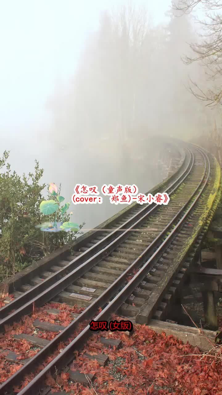 《怎叹(童声版) (cover: 郑鱼)-宋小睿》这首歌极具感染力
