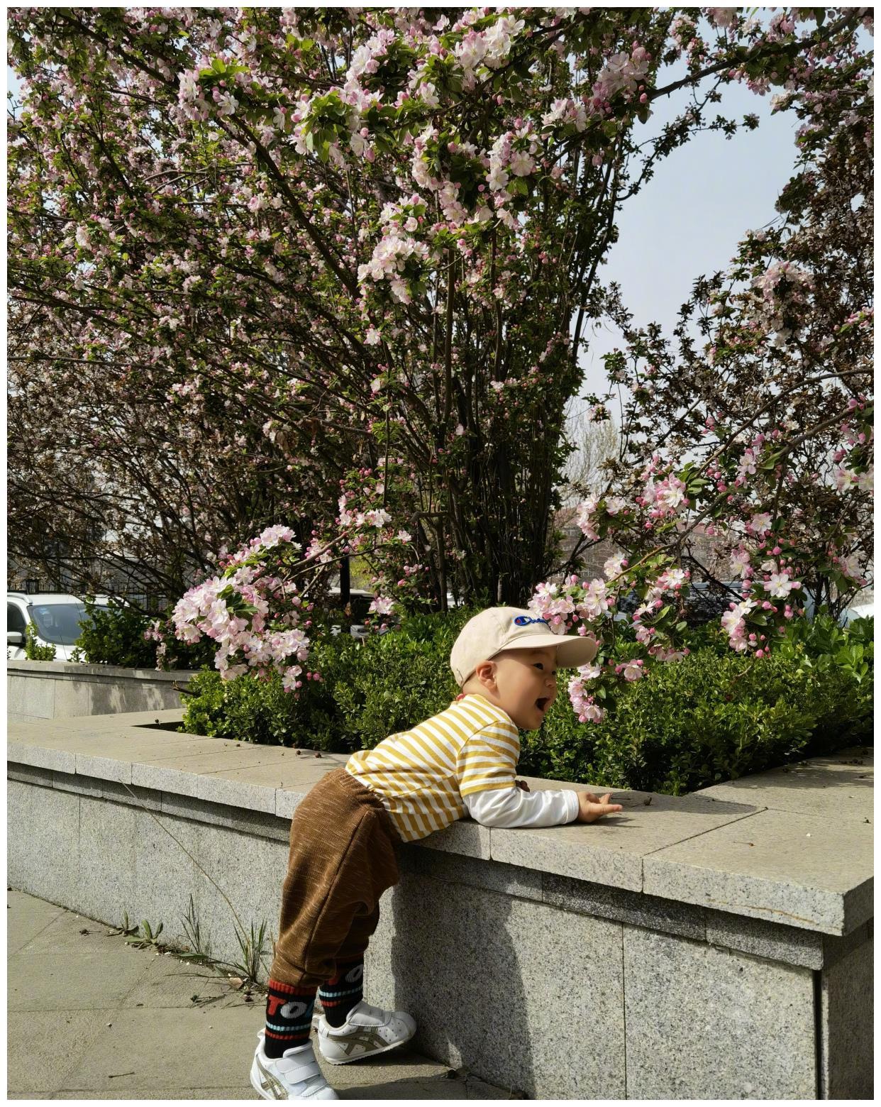 魏秋月更新动态:带儿子逛动物园,变身家庭主妇