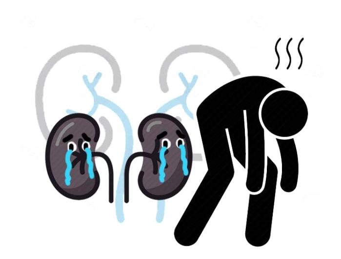 医生提醒:肾脏若发生病变,尿液或有这些异常!