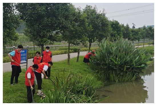 """争当""""河小青""""宝丰县青年志愿者巡河净滩在行动"""