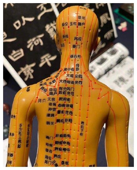 邓超出差回家看见孙俪的针灸人体模型,问网友逃不逃 ???
