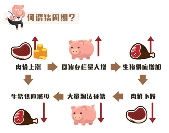 《【万和城代理平台】「超级猪周期」回落,相关概念股再遇低吸良机?》