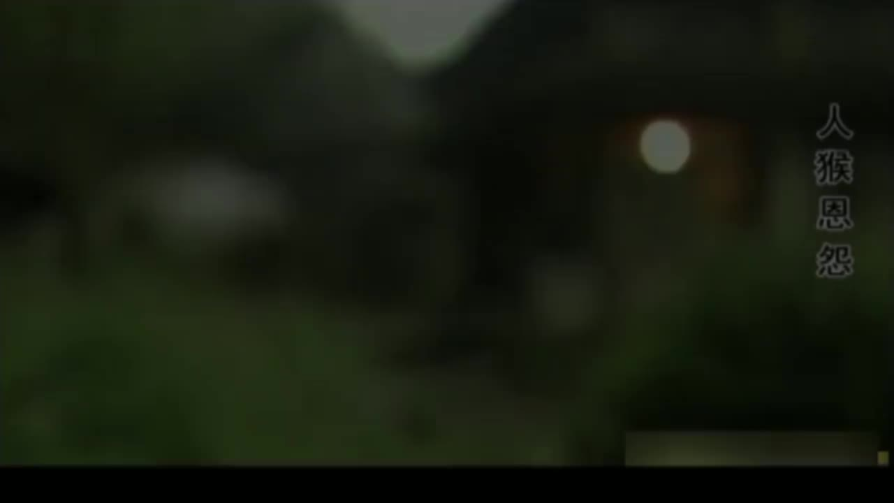 人猴恩怨1:村主任放生独臂猴,结果第二天,村里就遭了殃