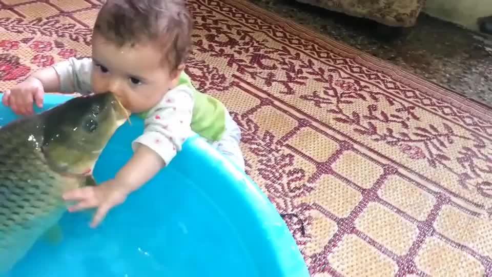小宝宝亲了一口大鱼,接下来的一幕让爸爸都想不到,好萌啊!