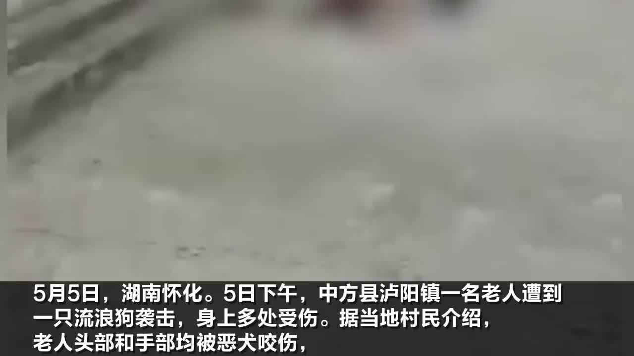 湖南老人被流浪狗咬伤倒地村民头手多处受伤狗被村民打死