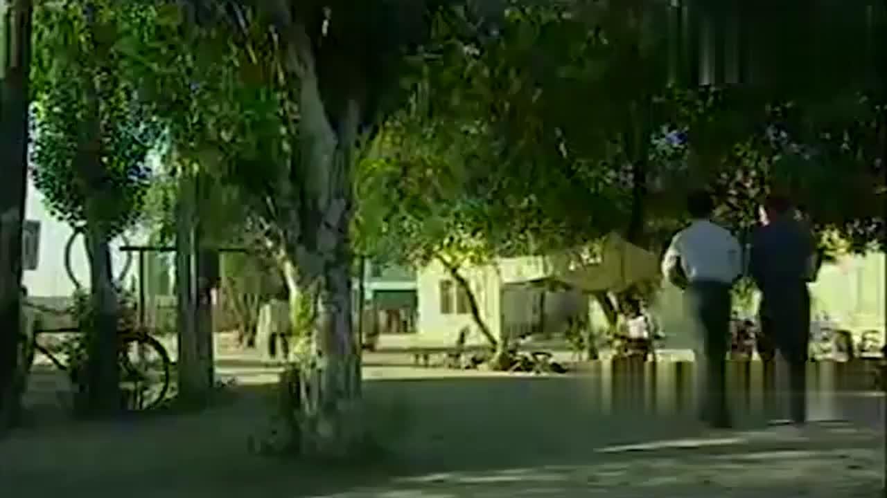 中国刑侦:警方万万没想到,白宝山的枪袋,竟是一小孩缝制的!