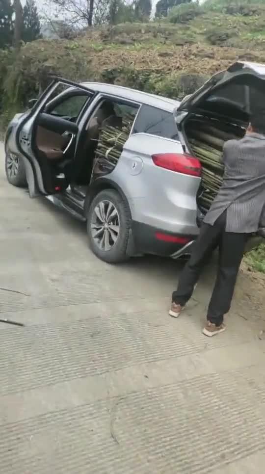 视频:回到农村的博越,这一幕让我开眼了,比五菱神车还能装啊