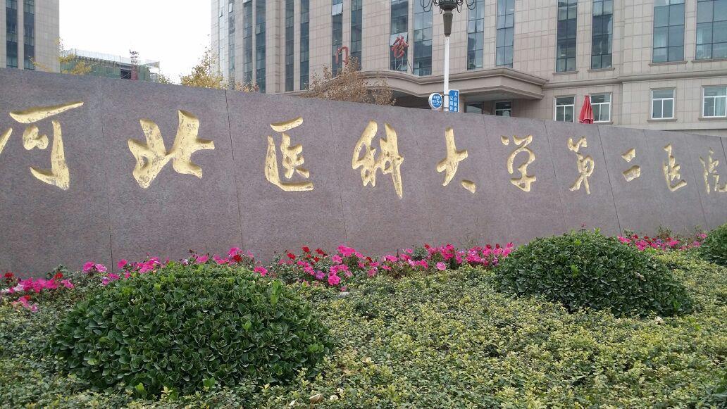 河北医科大学第二医院瞒报工资总额等三条行政违法被行政处罚