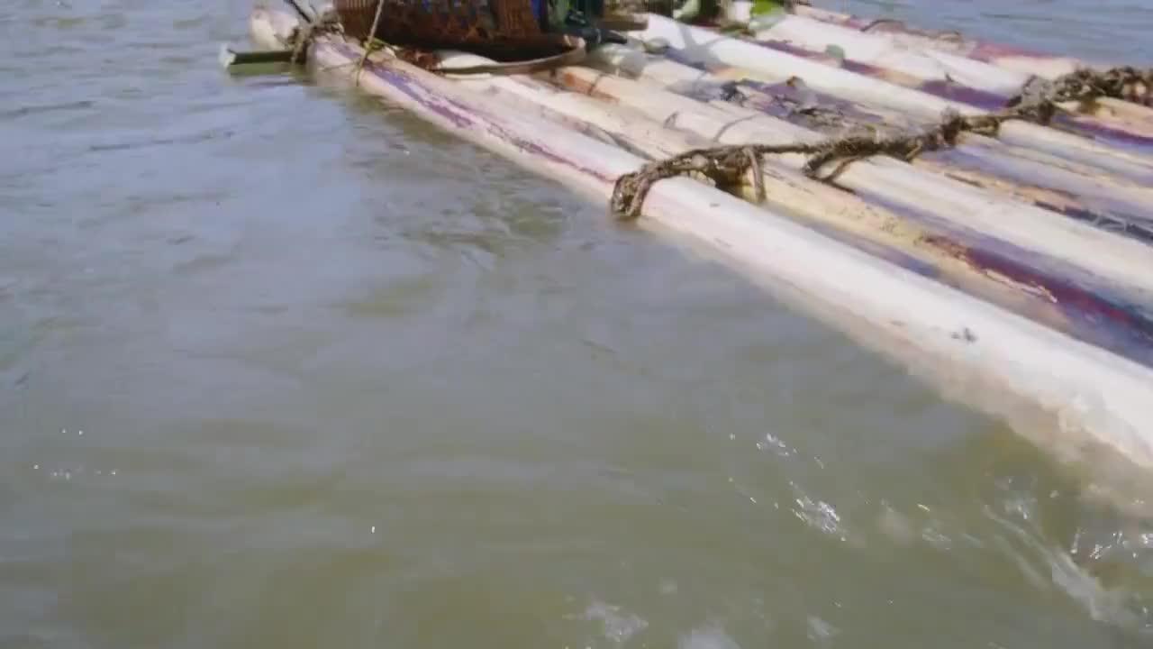 黑爷在河上漂流,旋涡就在不远处,真是危险