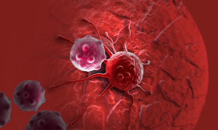 科学家在海洋生物体内发现一种抗癌物质