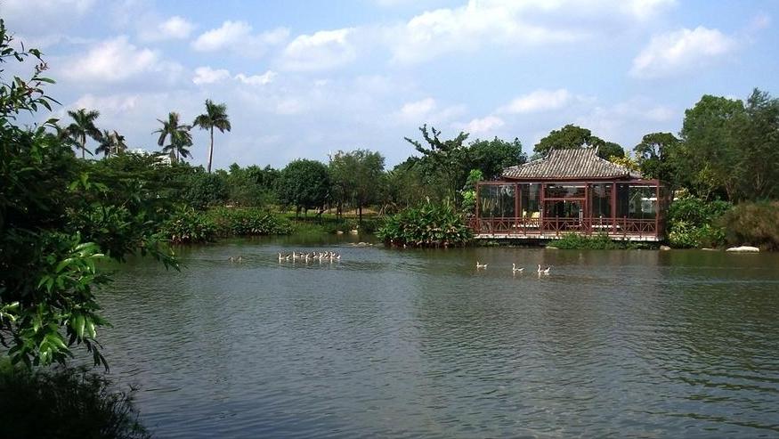 广州适合一日游景点,赏花的好处,门票免费