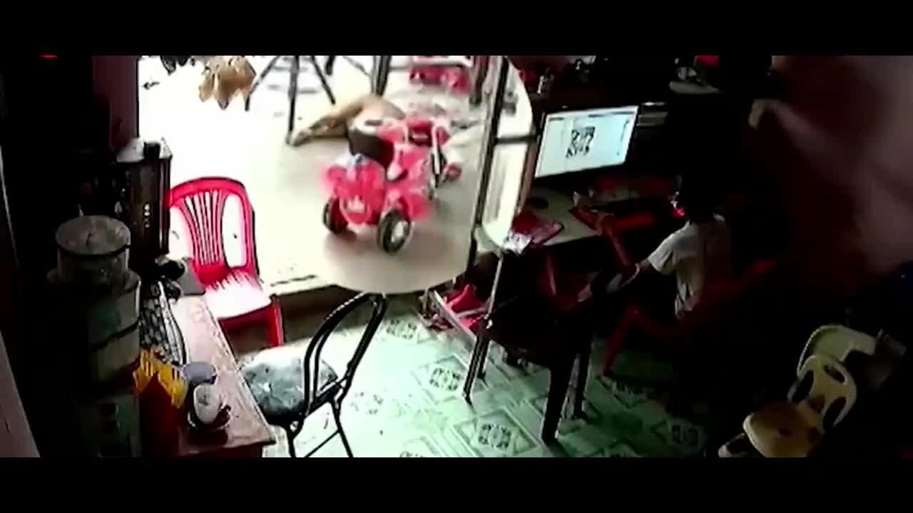 男孩惬意玩电脑,屋外狗子突然起身,下一秒悲剧发生了!