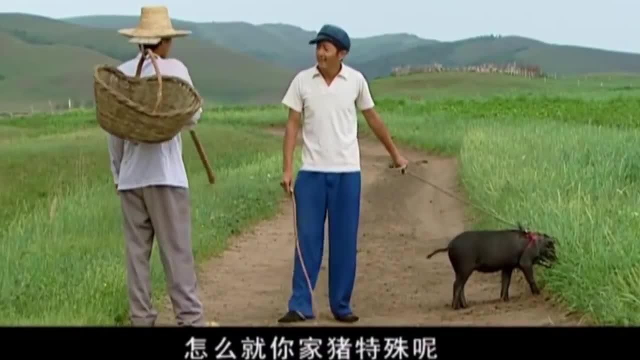 农村大哥抠门到家了!见过遛狗和遛娃的,还没见过遛猪的!