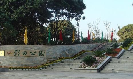 深圳福田中心区的这个公园非常适合休闲