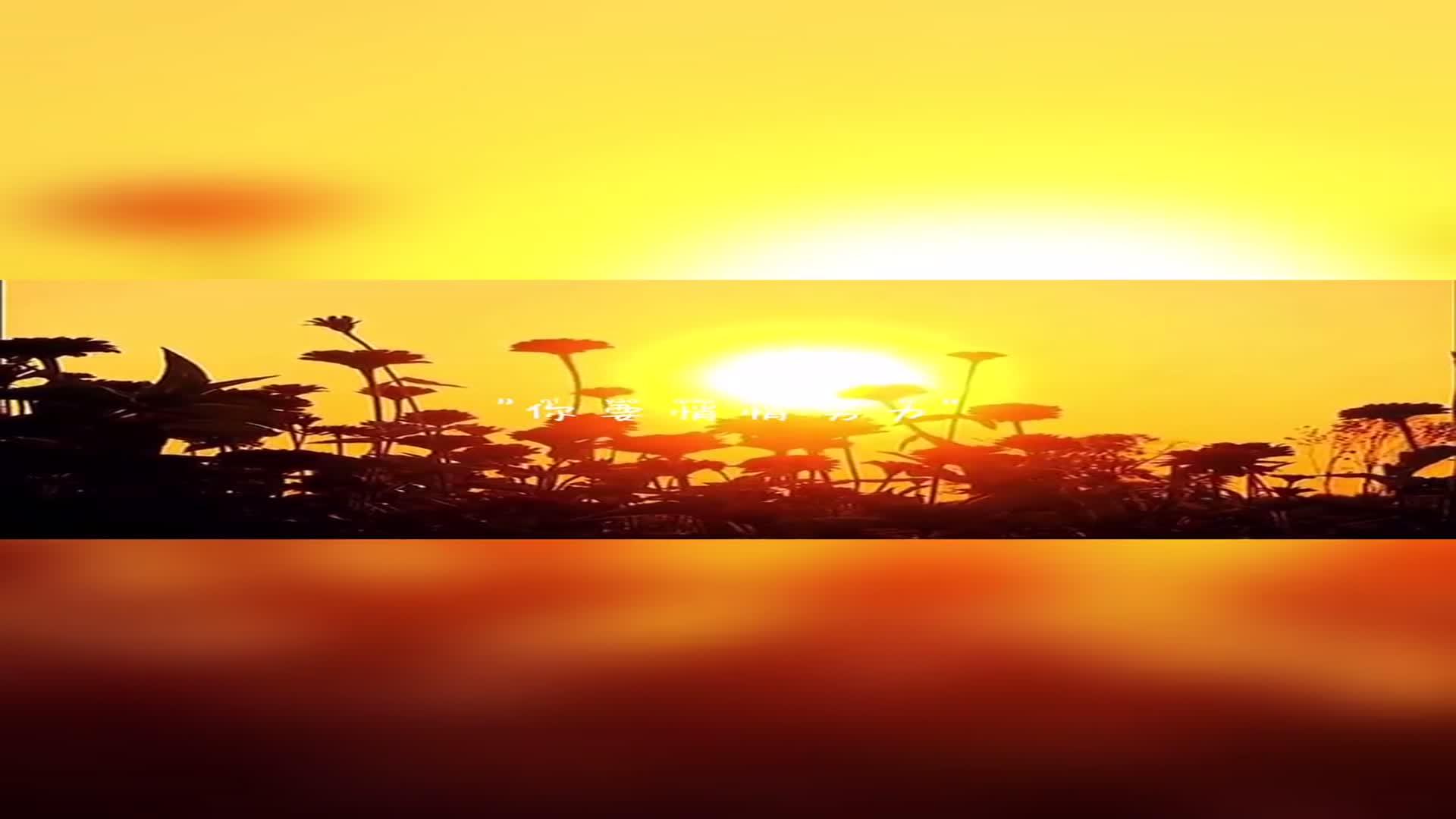 落日,就像是一幅会流动的画,流动的都是最美的色彩