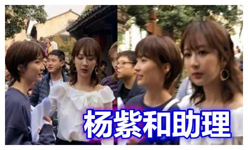 杨紫的助理,沈月的助理,鞠婧祎的助理,看到张雪迎助理:花痴了