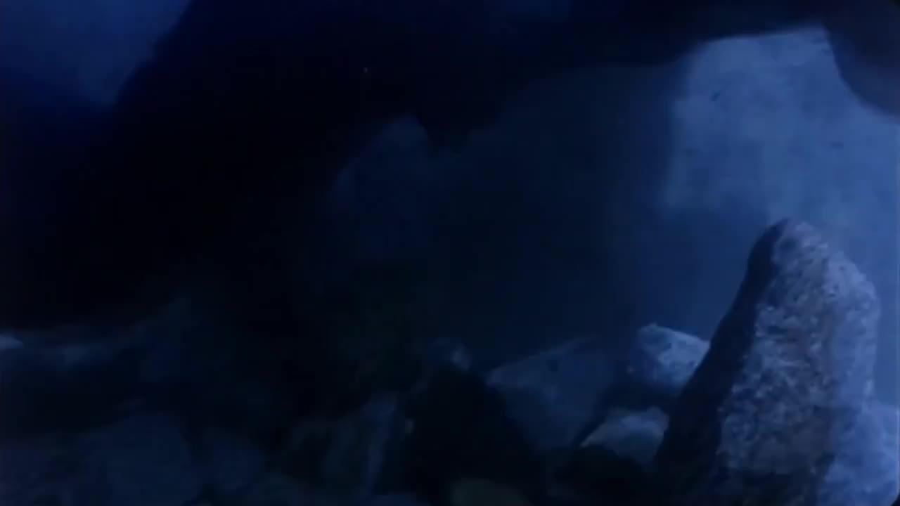 没想到水里有水鬼,幸好姑娘水性好,成功摆脱水鬼