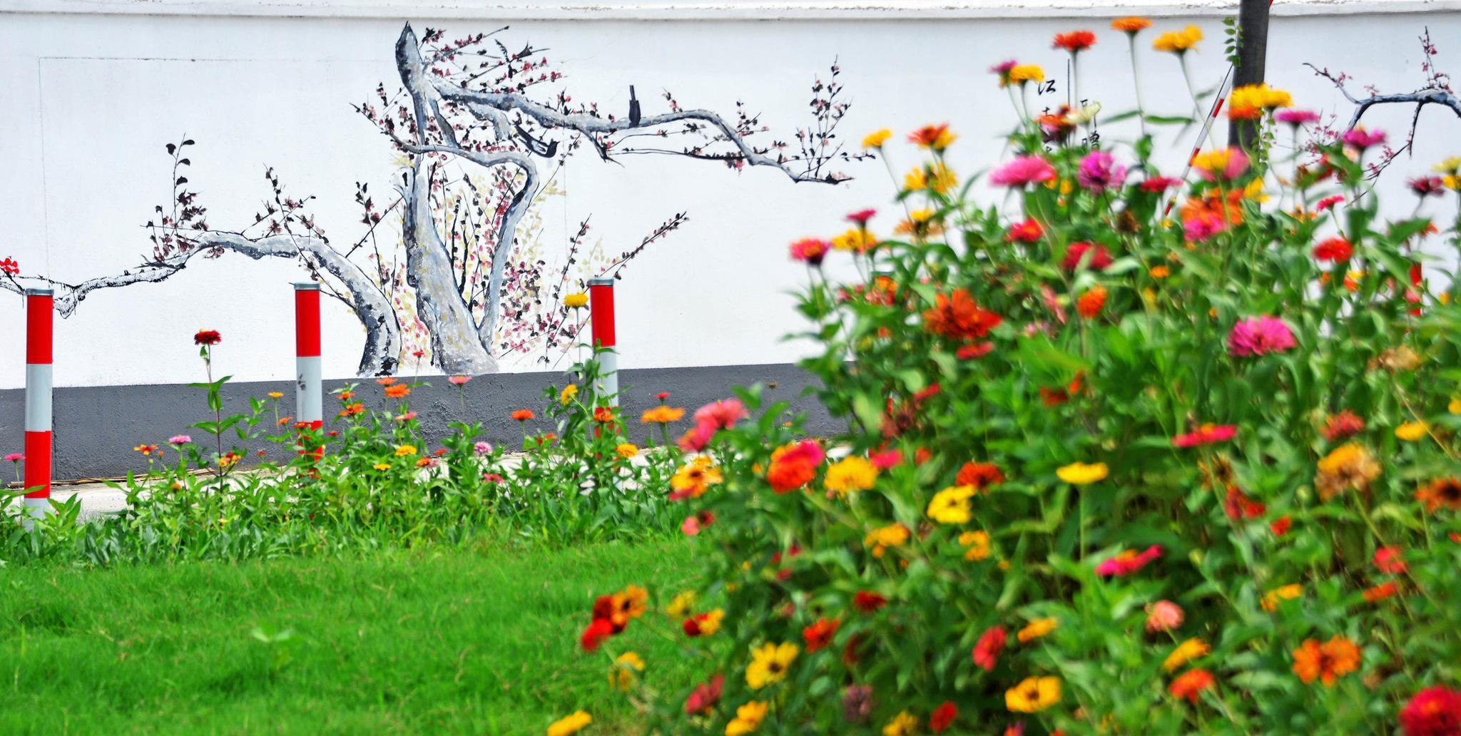 西贝村的价值有了很大的提高 这是江苏省无锡市锡山区金凤村的自然村