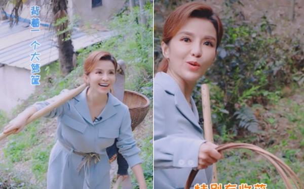 央视主持人朱迅上山挖笋,背着竹篓扛着锄头,夫妻两人尽显恩爱
