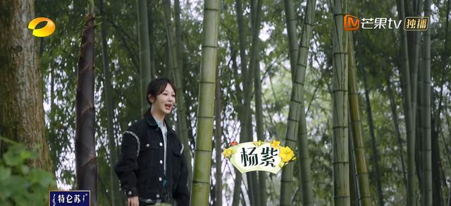 杨紫做客《向往》,与张子枫彭昱畅热聊,张艺兴坐在一旁插不上话