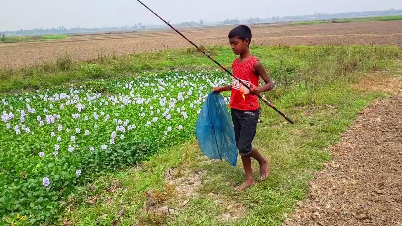 农村聪明男孩郊外钓鱼,抛了几竿,看一看他钓了多少?