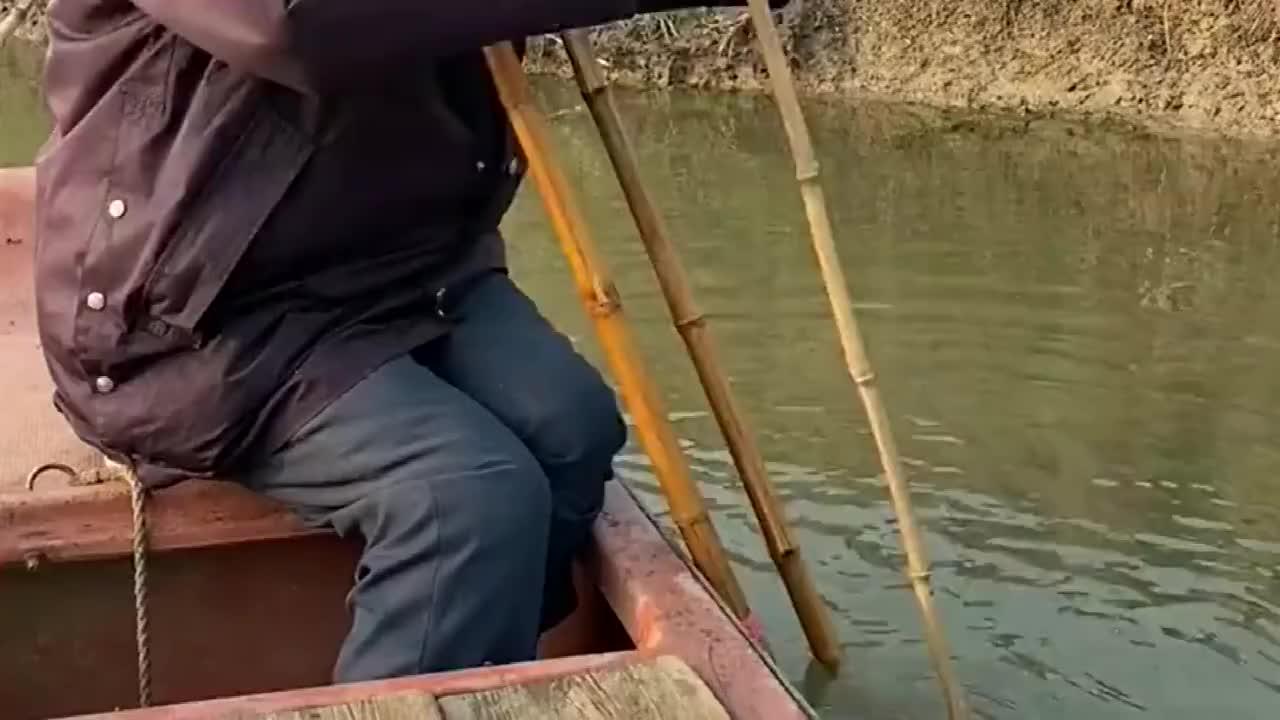 捕甲鱼不用渔网,没一会就收获了一只大货!