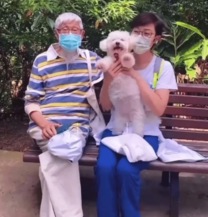 陈法蓉五一出游,与84岁老父手牵手逛公园,依偎对方怀中似孩童