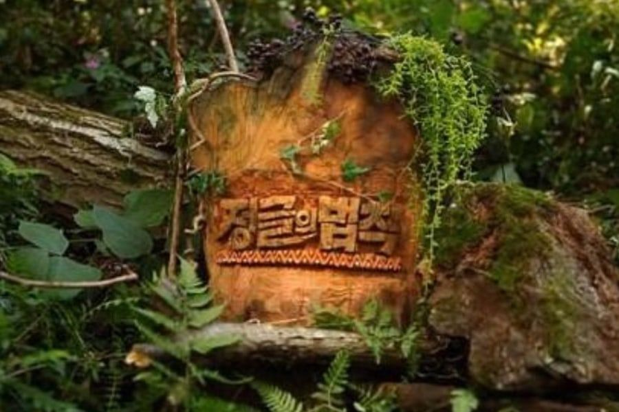 《金炳万的丛林法则》停播后现正在洽谈新一季在韩国回归